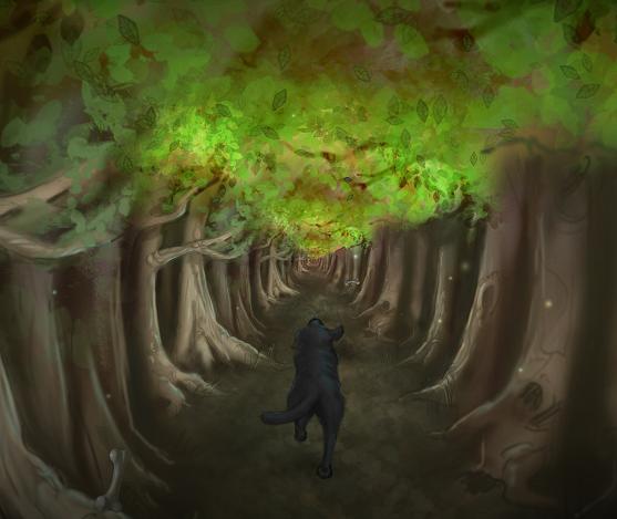 emilysforest